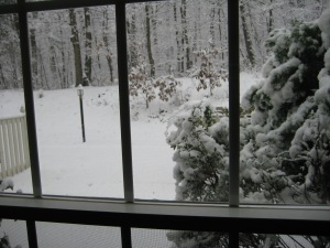 The view from our living room as my contractions intensified that day