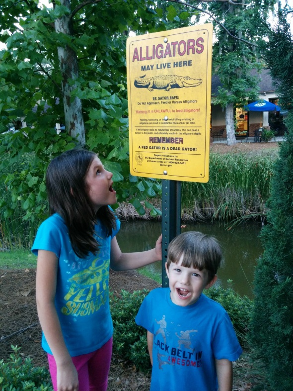 In Hilton Head, SC, you look out for alligators as you walk from your car to the restaurant. You can see the terror.